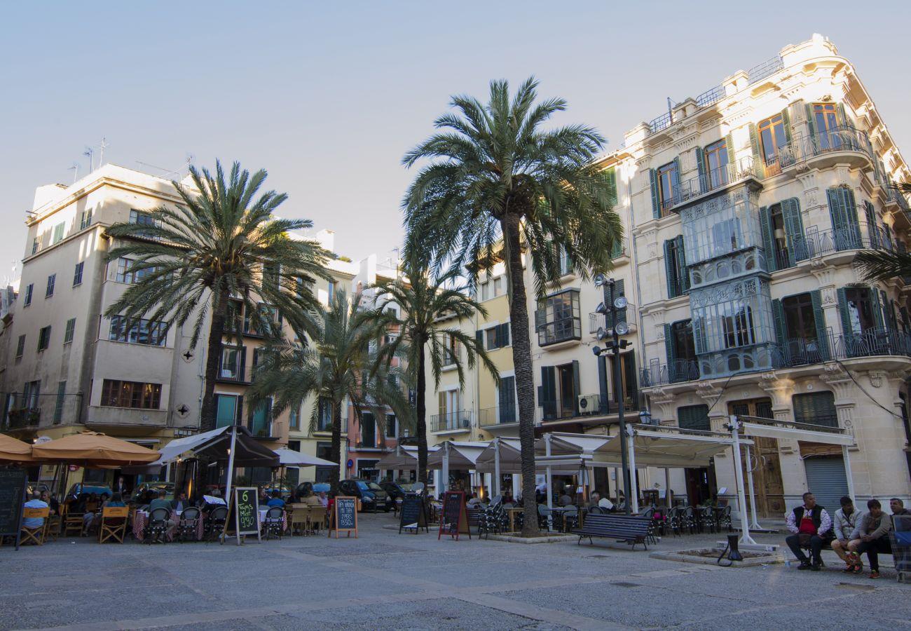 Ferienwohnung in Palma de Mallorca - Centro de Palma junto a la Catedral - La Lonja Hom